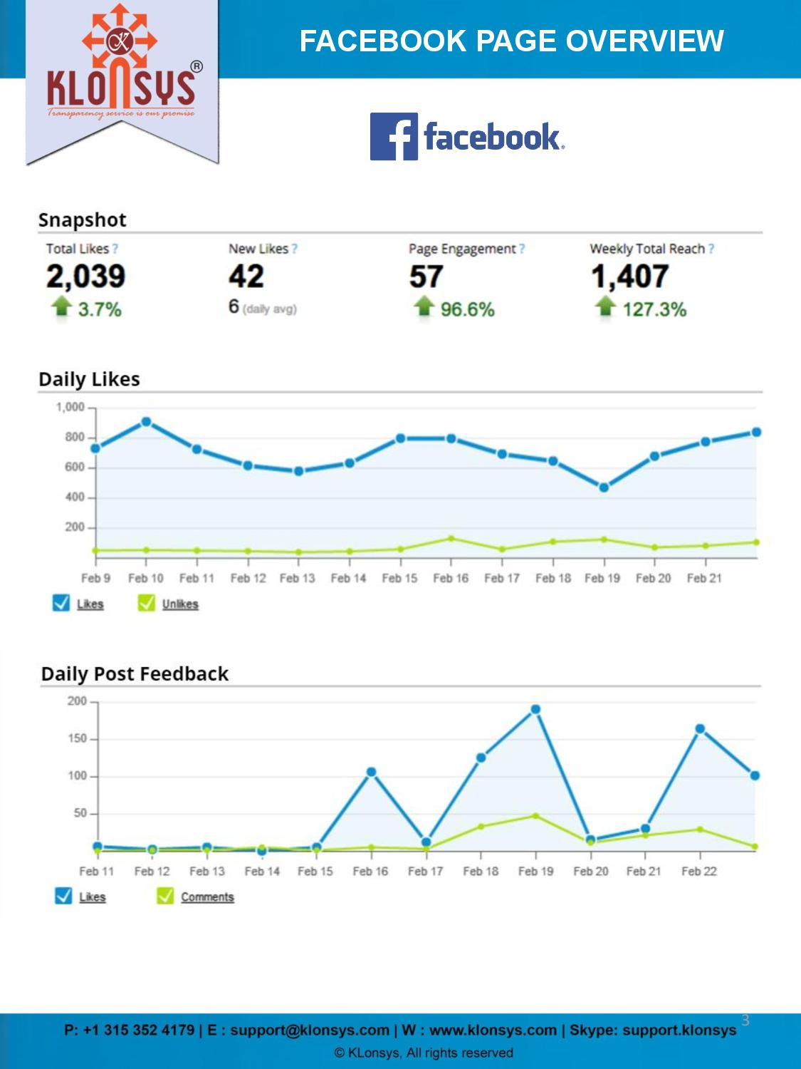 Social Media Report -page-003
